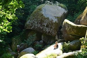 Chambre d'hôtes Finistère: découvrir la forêt du Huelgoat