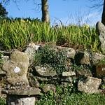 sculptures en granit au gite de kerioret izella